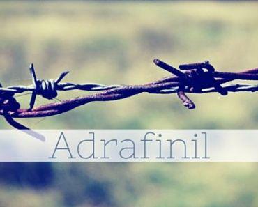adrafinil online