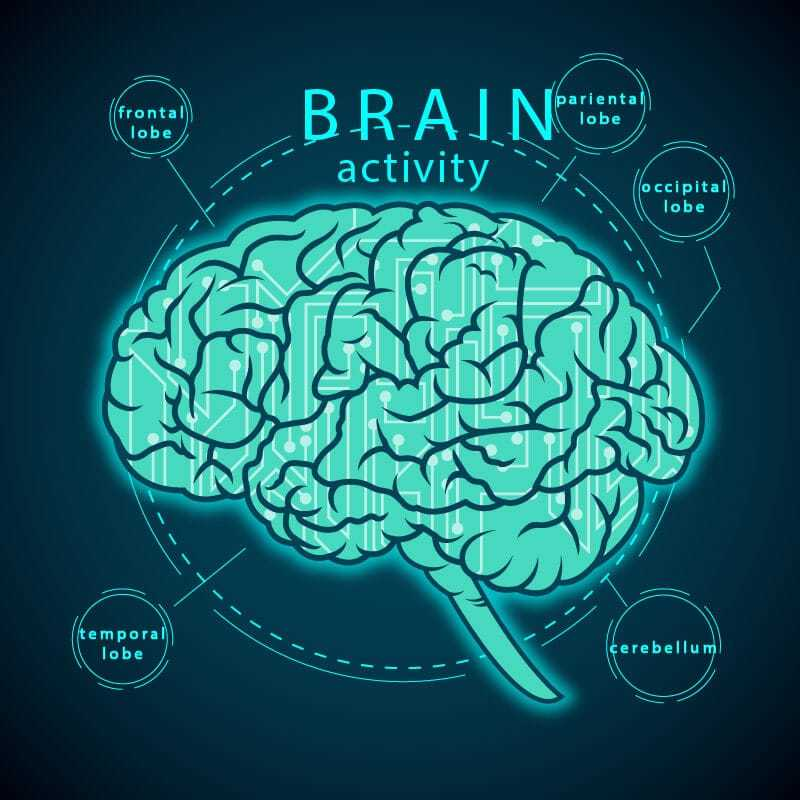 7 Nootropics for Beginners To Make You a Believer